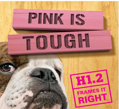 Cover of the Pink is Tough document