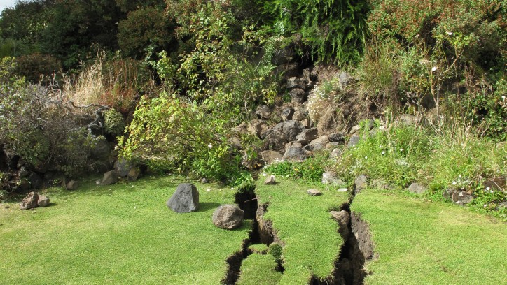 Earthquake cracks in a lawn